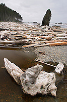 Driftwood at the mouth of Cedar Creek, Ruby Beach, Olympic National Park, Olympic Peninsula, Jefferson County, Washington, USA