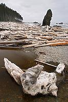Driftwood at the mouth of Cedar Creek, Ruby Beach, Olympic National Park, Olympic Peninsula, Jefferson County, Washington, USA