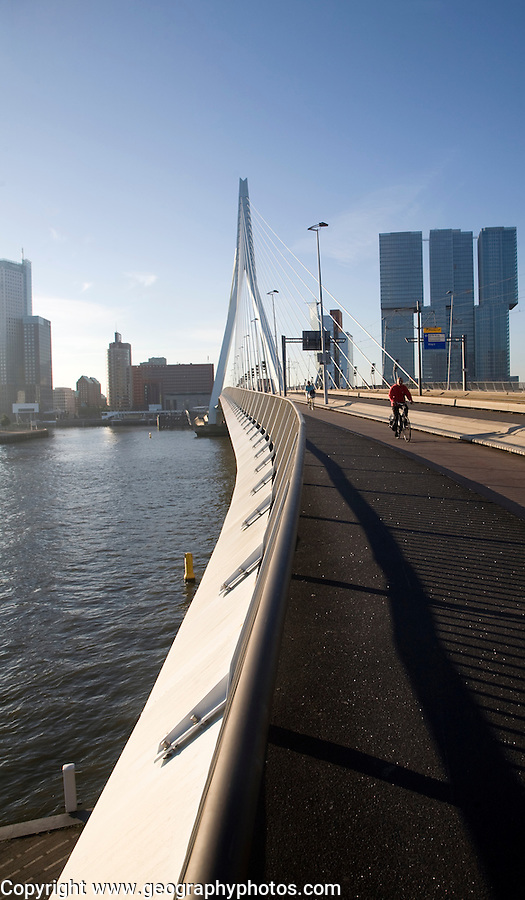 Erasmus Bridge, Erasmusbrug, spanning the River Maas designed by architect Ben van Berkel completed 1996, 800 metre span linking north and south Rotterdam, Netherlands,