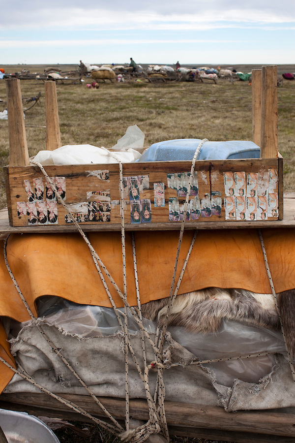 Bovanenkovo ,Yamal Peninsula, Russia, 09/07/2010..Bubble gum stickers of foreign pop stars on baggage as the Nenets, indigenous nomadic reindeer herders, prepare to leave their overnight camp on sledges heading north to the Russian Arctic coast..
