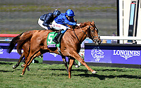 DEL MAR, CA - NOVEMBER 04: Wuheida #5, ridden by William Buick, pulls ahead during the Breeders' Cup Filly and Mare Turf race on Day 2 of the 2017 Breeders' Cup World Championships at Del Mar Racing Club on November 4, 2017 in Del Mar, California. (Photo by Bob Mayberger/Eclipse Sportswire/Breeders Cup)