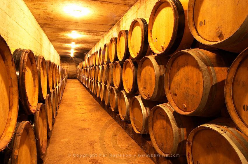 Wine aging in oak barrels in the barrique aging cellar Domaine de Triennes Nans-les-Pins Var Cote d'Azur France