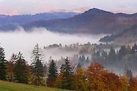Southern carpathians, near Zarnesti, Transylvania, Southern Carpathians, Romania