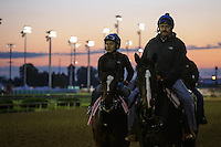 May 1, 2014: Untapable prepares for the Kentucky Oaks at Churchill Downs in Louisville, KY. Zoe Metz/ESW/CSM