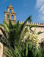 TAE-Lipari  Sicily, Aeolian Islands & Archeo Museum