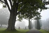 August 12, 2006; Ellicottville, New York, USA; Cemetery on a foggy morning. Photo © Ron Scheffler.