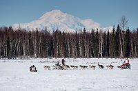 Aliy Zirkle runs on Long Lake with Denali in the background during the Restart of the 2016 Iditarod in Willow, Alaska.  March 06, 2016.