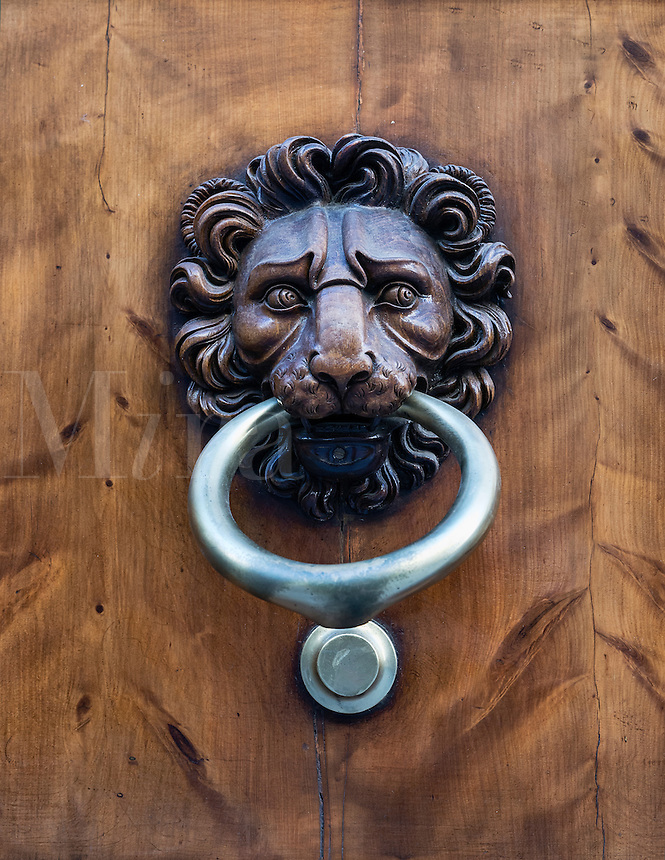 Decorative lion door knocker, Florence, Italy