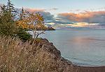 Gooseberry Falls State Park, MN: Sunset clouds over Lake Superior shoreline with grasses and birch on rock outcrop
