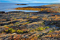 Rocky coastline of Lunenburg Bay (Atlantic Ocean)<br /> Blue Rocks<br /> Nova Scotia<br /> Canada