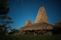 March 25, 2016 - Wainyapu (Indonesia). View of the traditional Sumbanese houses of the village. The central part of the construction is used as a chimney.  © Thomas Cristofoletti / Ruom