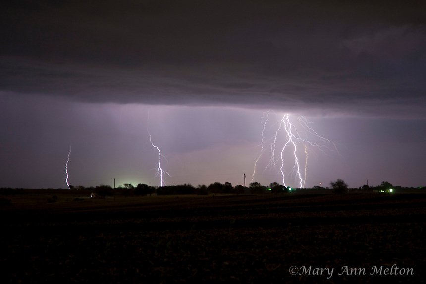 Evening storm lightning strikes