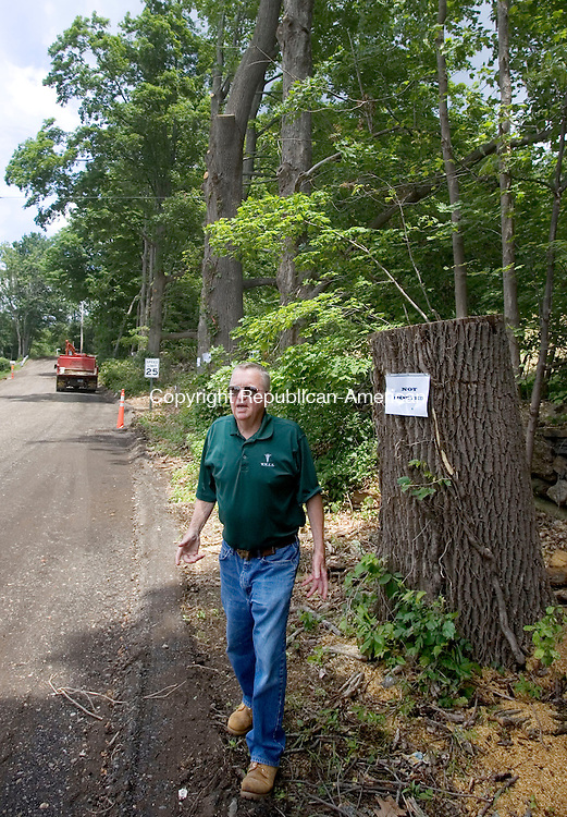WOLCOTT CT. 19 June 2014-061914SV03-Dave Shea surveys the damage after the town cut down 10 trees along his property without notifying him or posting the trees as required by law on Minor Road in Wolcott Thursday. Shea posted a chainsaw massacre sign on his property. <br /> Steven Valenti Republican-American