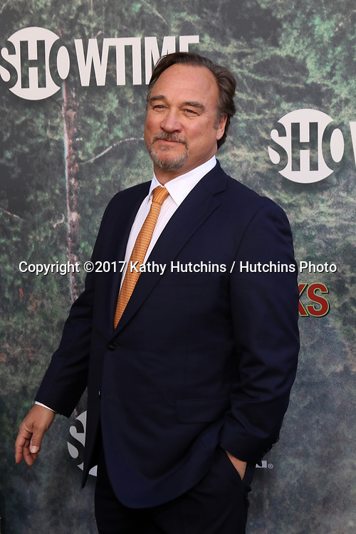 """LOS ANGELES - MAY 19:  Jim Belushi at the """"Twin Peaks"""" Premiere Screening at The Theater at Ace Hotel on May 19, 2017 in Los Angeles, CA"""