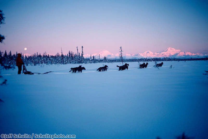 Joe Redington Sr Mushing Moonrise Interior Alaska Winter