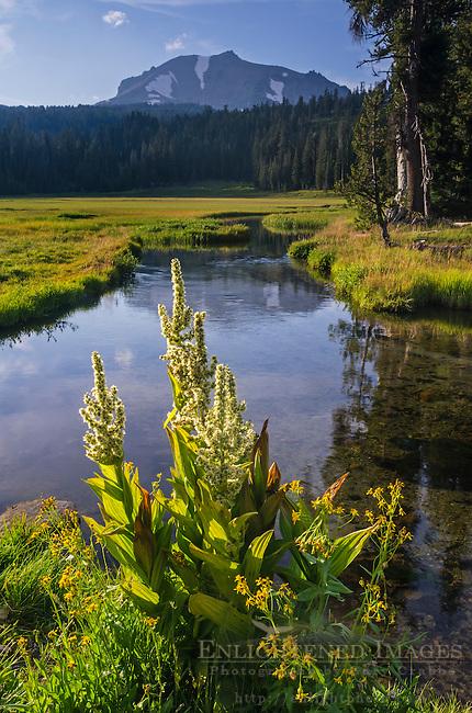Kings Creek and Lassen Peak as seen from Upper Meadow, Lassen Volcanic National Park, California