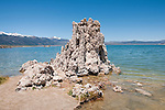tufas, Mono Lake; Mono Basin National Forest Scenic Area, California, USA.  Photo copyright Lee Foster.  Photo # california120957
