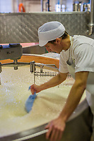 Europe/France/Franche-Comté/25/Doubs/Labergement-Sainte-Marie: Fruitière des Deux Lacs - Préparation du Comté // France, Doubs, Labergement Sainte Marie,  cheesemaking facility, or fruitière, Comté is an ancient cooked and pressed cheese made from raw milk<br /> Auto N°: 2013-109