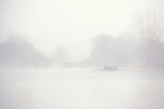 Rowing in heavy fog on the Thames -running through Port Meadow