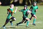 NELSON, NEW ZEALAND - MAY 6: Saturday morning Rugby on May 6 2017 in Nelson, New Zealand. (Photo by: Evan Barnes Shuttersport Limited)