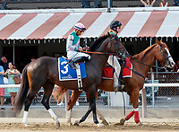 Forge in the post parade as Qurbaan (no. 6) wins the Bernard Baruch Handicap (Grade 2), Sep. 3, 2018 at the Saratoga Race Course, Saratoga Springs, NY.  Ridden by Irad Ortiz, Jr., and trained by Kiaran McLaughlin, Qurbaan finished  a nose in front of Forge (no. 3) and Projected (no. 2) in a three horse photo finish.  (Bruce Dudek/Eclipse Sportswire)