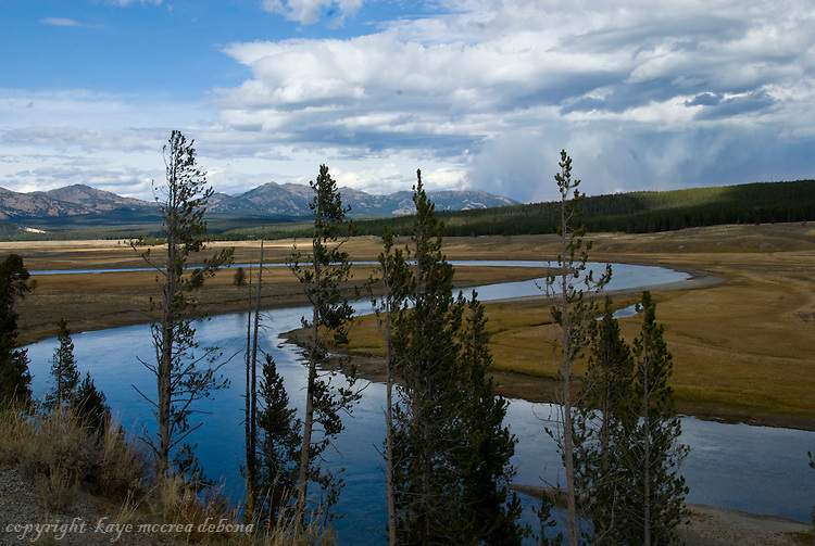 Hayden Valley and the Yellowstone River in Yellowstone National Park