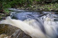 Cedar Creek along the Boy Scout Trail below Davies Bridge.
