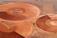 Bewaesserung von Feldern in New Mexico: AMERIKA, VEREINIGTE STAATEN VON AMERIKA, NEW MEXICO,  (AMERICA, UNITED STATES OF AMERICA), 07.05.2006: Bewaesserung von Feldern in  der Wueste von  New Mexico im Torrance County, Futtermittel