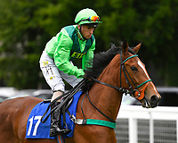 Sinndarella ridden by Noel Garbutt goes down to the start  of The Bathwick Car & Van Hire Novice Auction Stakes (Plus 10 during Afternoon Racing at Salisbury Racecourse on 12th June 2018
