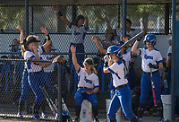 NWA Democrat-Gazette/BEN GOFF @NWABENGOFF<br /> Rogers players chant from the dugout Thursday, April 12, 2018, during the game against Springdale Har-Ber at Veterans Park in Rogers.