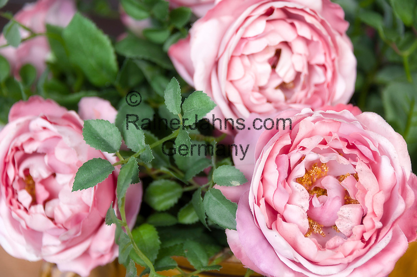 artificial Roses   kuenstliche Rosen