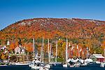 Autumn colors in Camden, ME, USA