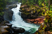 Silver Falls, one of the most spectacular and violent waterfalls to be seen on Mount Rainier.