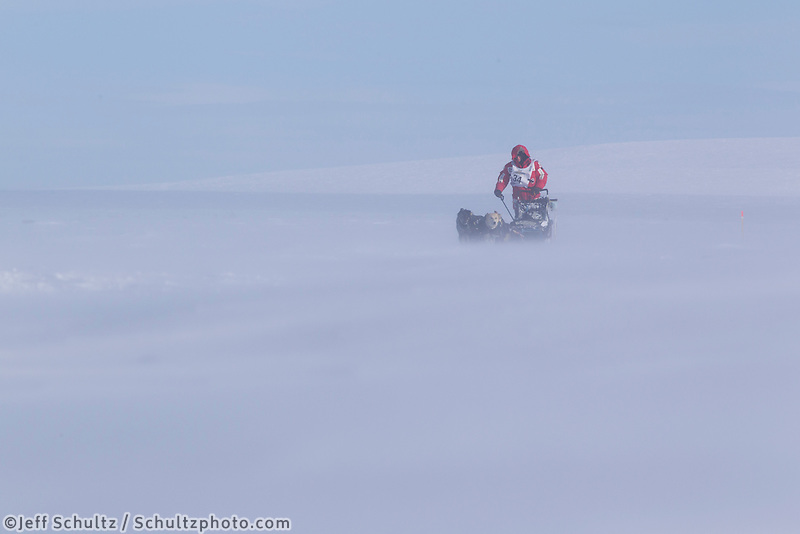Tuesday March 13, 2012 Dallas Seavey runs overland along the Bering Sea Coast 8 miles from the finish line in Nome in 25 mph winds  Iditarod 2012.