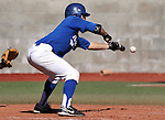Western Nevada's Matt Becker makes a bunt attempt during a college baseball game against Salt Lake Community College in Carson City, Nev., on Friday, March 1, 2013..Photo by Cathleen Allison