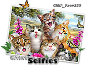 Howard, REALISTIC ANIMALS, REALISTISCHE TIERE, ANIMALES REALISTICOS, selfies, paintings+++++Cat Selfie,GBHRPROV229,#a#, EVERYDAY ,unterwater,maritime,sharks,