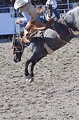 Stock photos bucking bronco at rodeo Stock photo rodeo