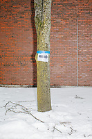 A sign points the way to the media entrance for a campaign rally for Democratic presidential candidate and Massachusetts senator Elizabeth Warren at Rochester Opera House in Rochester, New Hampshire, on Mon., Feb. 10, 2020. This is the final day of campaigning before voting in the primary happens on Feb. 11. Warren has fallen to 4th or 5th place in recent polls.