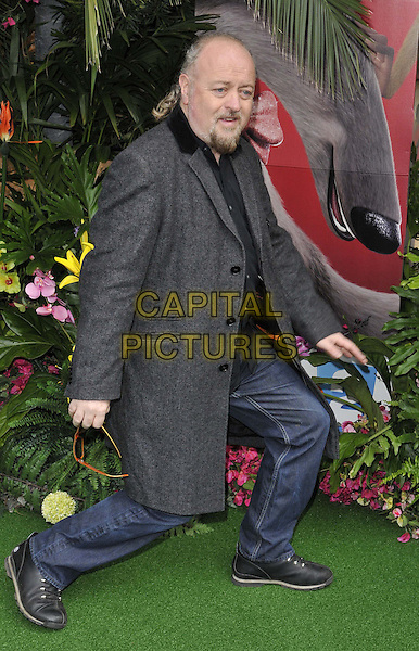 LONDON, ENGLAND - MARCH 30: Bill Bailey attends the &quot;Rio 2&quot; VIP film screening, Vue West End cinema, Leicester Square, on Sunday March 30, 2014 in London, England, UK.<br /> CAP/CAN<br /> &copy;Can Nguyen/Capital Pictures