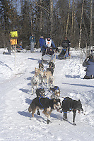 Darin Nelson Anchorage Start Iditarod 2008.