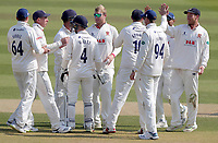 Essex players surround Simon Harmer to celebrate taking the wicket of Ryan Patel during Surrey CCC vs Essex CCC, Specsavers County Championship Division 1 Cricket at the Kia Oval on 14th April 2019