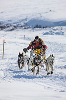 Musher Mitch Seavey just outside of Candle, the half way point of the 2008 All Alaska Sweepstakes sled dog race.