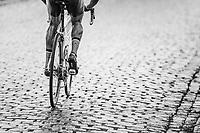 pedaling the cobbles<br /> <br /> 2nd Dwars door het Hageland 2017 (UCI 1.1)<br /> Aarschot > Diest : 193km