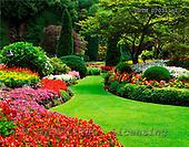 Tom Mackie, FLOWERS, photos, The Sunken Garden, Butchart Gardens, Victoria, Vancouver Island, British Columbia, Canada, GBTM070311-1,#F# Garten, jardín