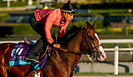 October 28, 2019 : Breeders' Cup Juvenile Turf entrant Graceful Kitten, trained by Amador Merei Sanchez, exercises in preparation for the Breeders' Cup World Championships at Santa Anita Park in Arcadia, California on October 28, 2019. John Voorhees/Eclipse Sportswire/Breeders' Cup/CSM