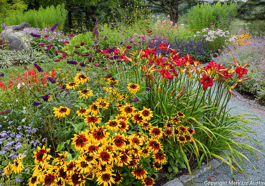 Southwest Harbor, Maine: Flowering Gardens And Pathways In The Charlotte  Rhoades Park And Butterfly