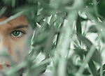 A half face of a young boy with a green eyes disappears between leaves. Photo by Sanad Ltefa
