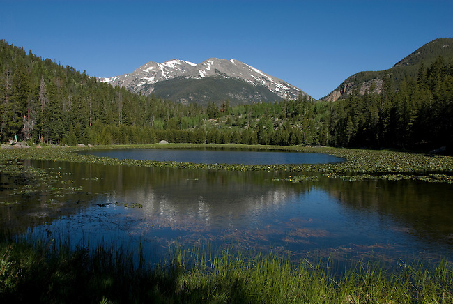 Cub Lake, Stones Peak, Rocky Mountains, landscape, yellow pondlilies, lily pads, Rocky Mountain National Park, spring, Colorado, USA.
