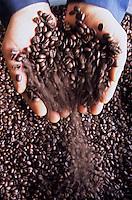 Amérique/Amérique du Nord/USA/Etats-Unis/Vallée du Delaware/Pennsylvanie/Philadelphie : Détail café à la Colombe Torréfaction Fournisseurs d'Alain Ducasse