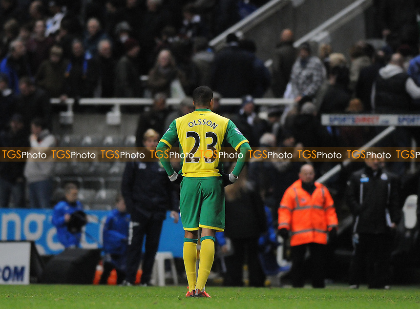 Martin Olsson of Norwich City is left frustrated at the final whistle - Newcastle United vs Norwich City - Barclays Premier League Football at St James Park, Newcastle upon Tyne - 23/11/13 - MANDATORY CREDIT: Steven White/TGSPHOTO - Self billing applies where appropriate - 0845 094 6026 - contact@tgsphoto.co.uk - NO UNPAID USE